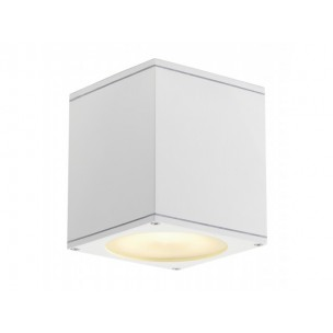 SLV 229551 Big Theo Ceiling Out wit plafondlamp buiten