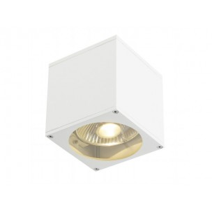 SLV 229561 Big Theo Wall Out wit wandlamp buiten