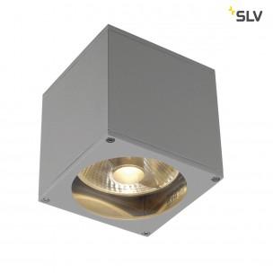 SLV 229564 Big Theo Wall Out zilvergrijs wandlamp buiten