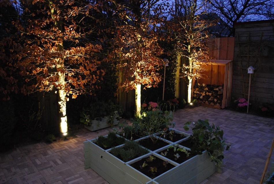 In lite scope 12 volt tuinverlichting - Hoe een boom te verlichten ...