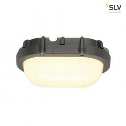 SLV 229925 Terang LED wandlamp buiten