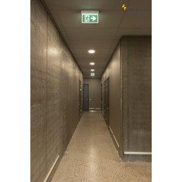 SLV 240002 p-light 33 noodverlichting exit sign groot